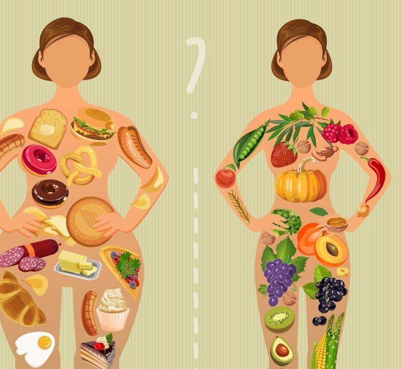 Метаболизм: что выберешь ты?