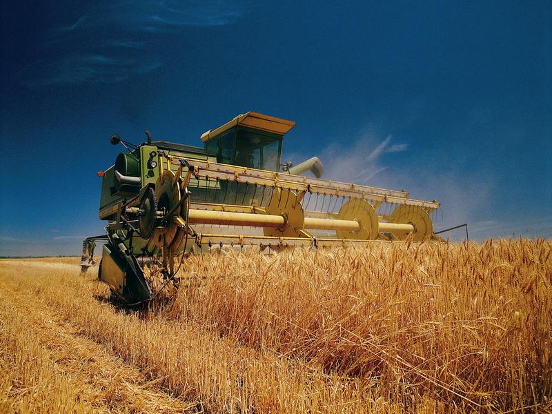 этого следует, российский производитель сельхозяйского оборудывания уже выяснили